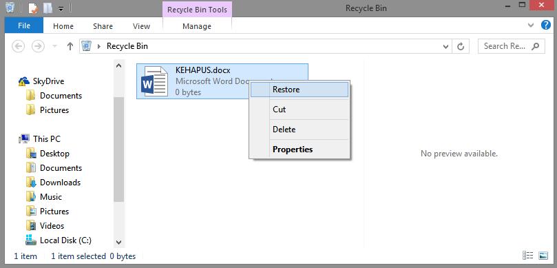 File Hilang Begini Cara Mengembalikan File Yang Terhapus Sepulsa
